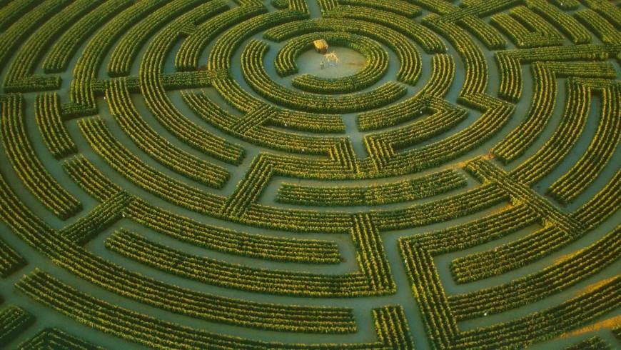 labyrinthe-Reignac-sur-Indre-credits-soo-curious
