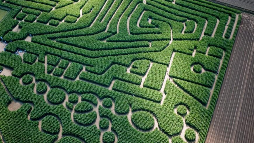 Labyrinthe de Caen