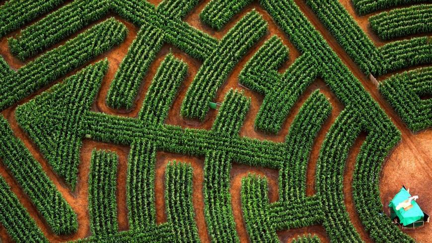 labyrinthe de Ribeauville
