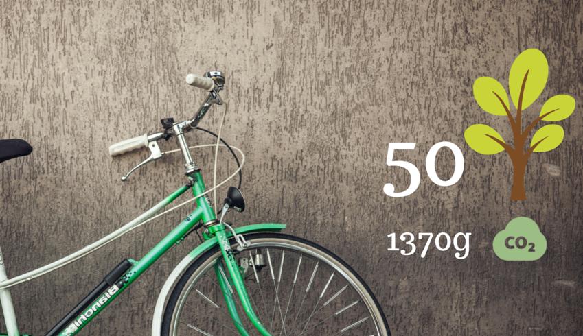 Combien de CO2 et combien des arbres épargnez-vous chaque jour en voyageant durablement avec Ecobnb ?