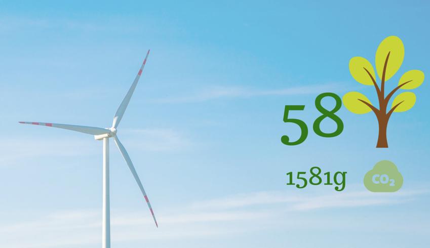Électricité à partir de sources renouvelables 100% - Combien de CO2 et combien des arbres épargnez-vous chaque jour en voyageant durablement avec Ecobnb ?