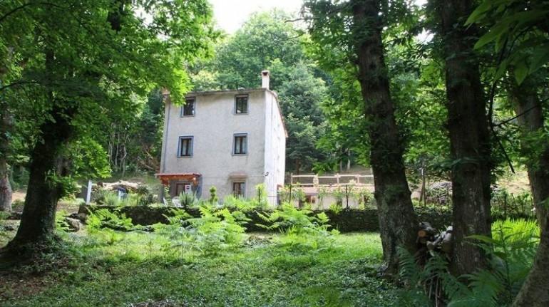 Une petite maison dans les bois à 15 minutes de la mer de la Toscane