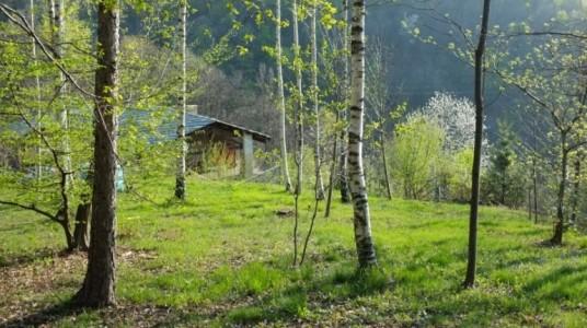 Casa Payer, une maison écologique dans les bois, dans le Piémont