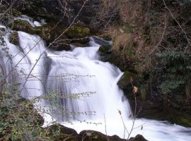 cascata_fiumelatte-270x200