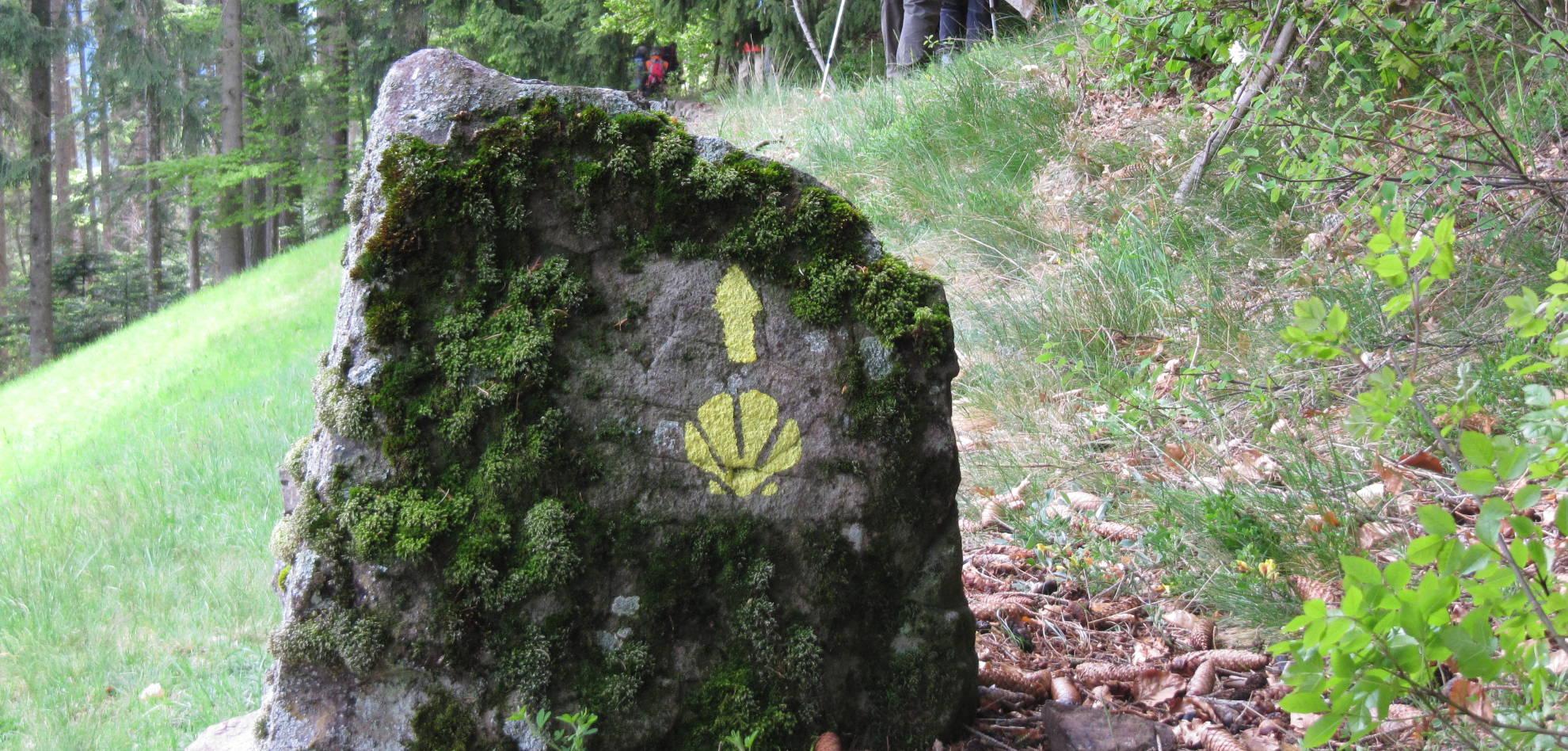 l-Cammino-Jacopeo-d'Anaunia