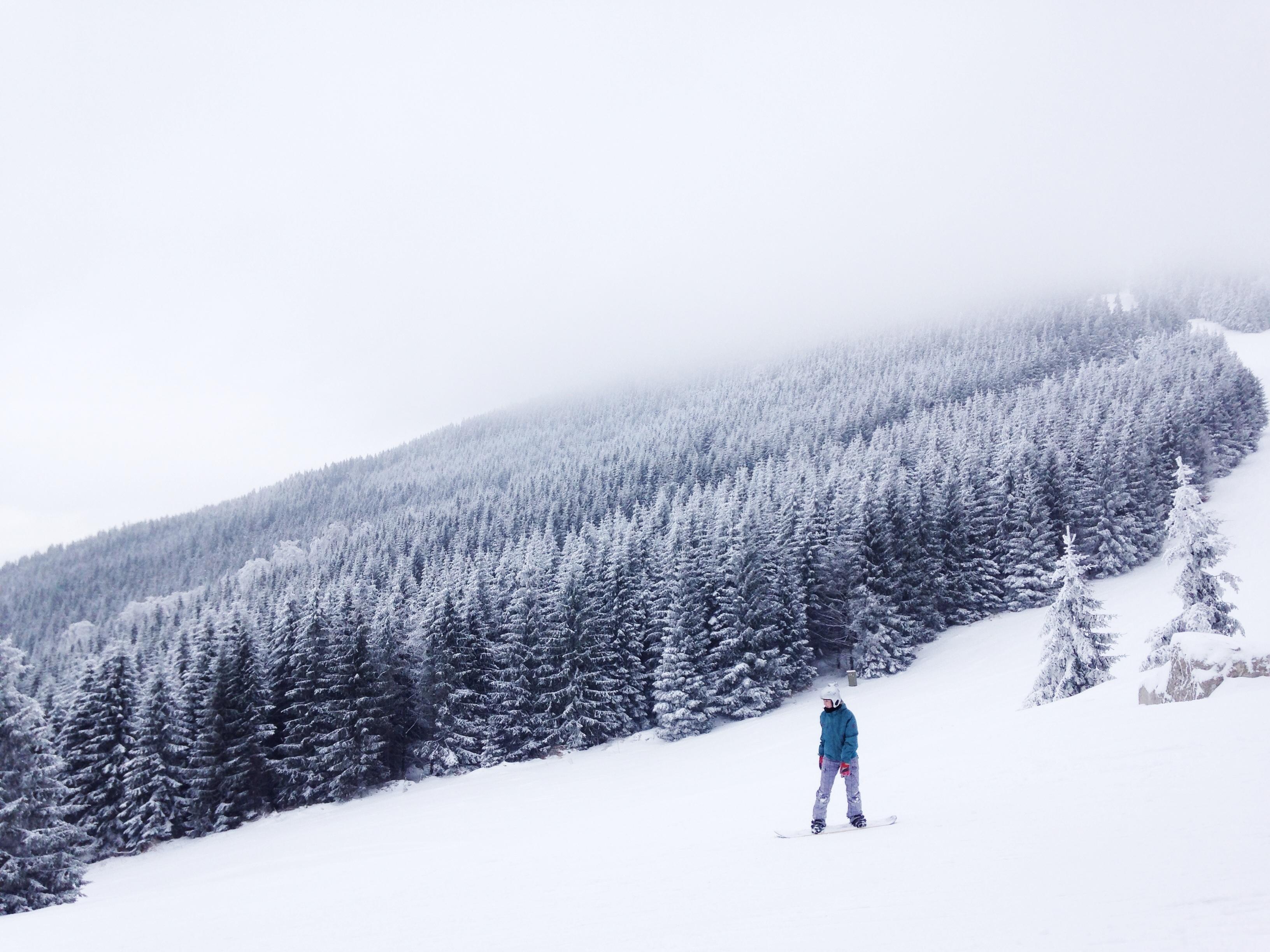 Dans la neige, photo de Tomas Kodydek, via unsplash