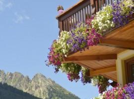 bien-être balcon fleurs