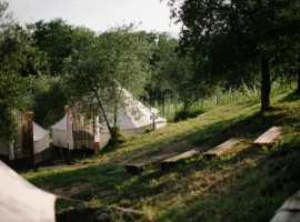 Lazy Olive Glamping