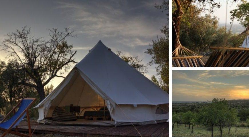 Tente et paysage chez Shauri Glamping